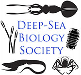 Deep-sea Biology Society logo